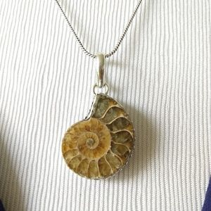 Nice ammonite fossil stamped pendant necklace